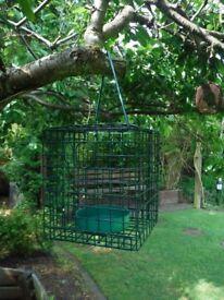 Bird - Live food feeder