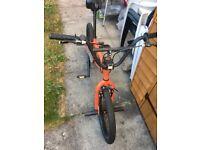 "Apollo X-Rated Decoy Boys BMX Bike 20"""