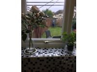Lovely 2 bed house, Seaton Delaval