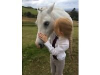 12h children's pony for part share
