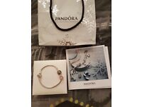 Pandora bracelet with two charms