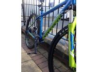 "Mens 29"" mountain bike"