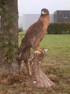 ADLER lebensecht lebensgroß 108cm Greifvogel NEUHEIT  SKULPTUR Wild Wald Deko
