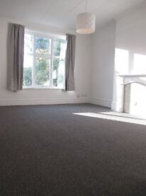 Newly Rennovated 1 Bed Flat To Let
