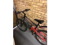 Hammerhead Bike 26'