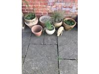 Assortment of Garden Pots and 5 Metal Hanging Baskets