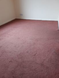 Dusty Pink carpet in very good condition