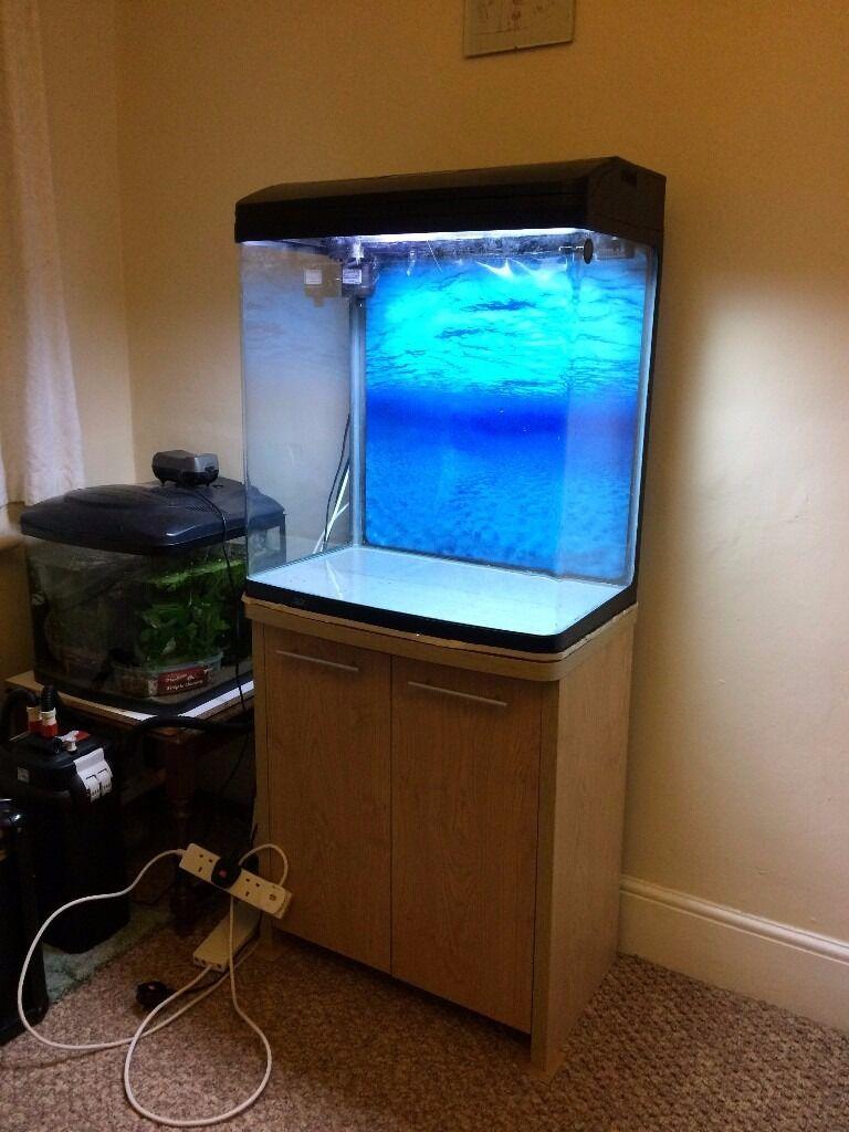 70cm tall fish tank aqua one 620t in newton abbot devon gumtree
