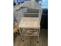 White Budgies cage and stand.