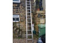 yougmans200 ladder