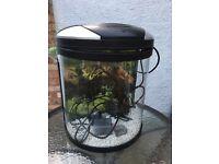 Aqua one Fish tank and pump-£30 ono