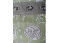 Next Green Seed Pod Eyelet Curtains (168cm x 229cm)