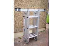 Abru Combination Ladder