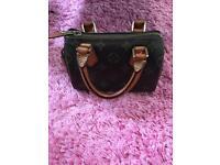 Louis Vuitton mini speedy bag