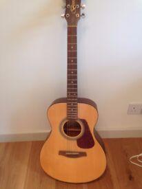 Guitar for beginner (new) steel strung
