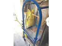 PARROT CAGE NEED GONE ASAP