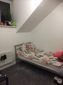 Beautiful singlet double room