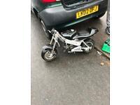 Mini moto 50cc 49cc motor bike/kids motor bike/midi moto/monkey bike.