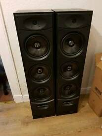 Large floor standing speakers