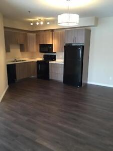 Two Bedroom Suite Available in Stonebridge!