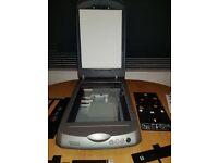 Epson scanner perfection 3170 photo