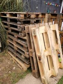 21 Euro pallets. 3 quid each or do a deal for job lot.