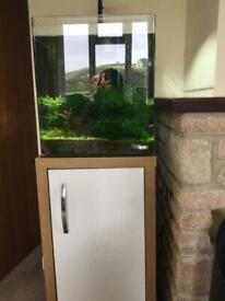 Dennerle Nano Qube Fish Tank 60 litres
