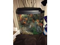 Corner Fish Tank with light, pump( filter) lid Gravel castle plants.