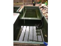 three (3) FIBRE GLASS FISH PONDS 5X5 6X9 8X4 all 2ft deep appx