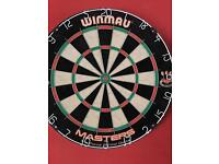 Dartboard new professional