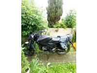 125cc ratbike