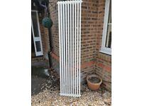 Vertical white 2 column radiator (Acova)