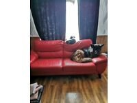 Large red leather sofa 18 months old free