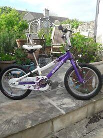 Specialized bike - child