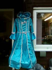 Fancy dress ball gown