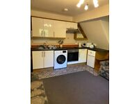 S7 One Bed Apartment, Within walking distance to London Rd and Abbeydale Rd