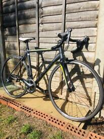 Road Bike Focus Cayo