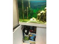Aquarium 250l + fluval filter 306