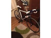 Roux Vercors road bike 🚴