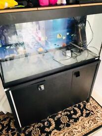FLUVAL Roma 200L Aquarium with black cabinet