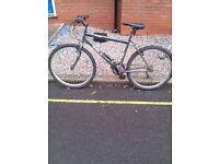 26 inch British Eagle bike for sale