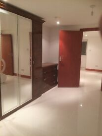 Newly refurbished large 1 bedroom luxury flat Near Stratford/Forest gate