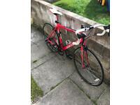 Carrera Zelos Road bike. 54cm frame