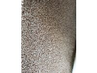 Used but good condition carpet