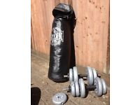 Punch Bag and assorted weights