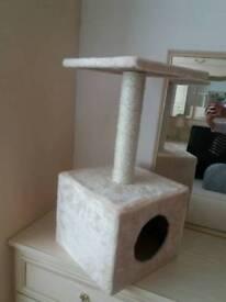 Brand new Cat activity box