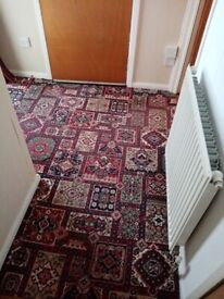 Free hall and stair carpet