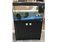 Quick Sale Needed 120L Fish Tank