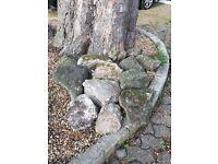 Ornamental Garden Rocks
