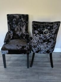 Velvet studded chairs